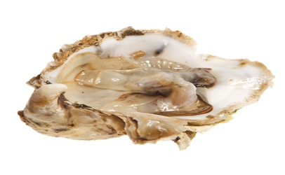 About 100 Norovirus Cases in California From Raw British Columbia Oysters
