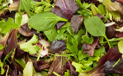 http://www.dreamstime.com/stock-image-fresh-mix-salad-image23862041