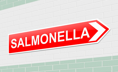 http://www.dreamstime.com/royalty-free-stock-photos-salmonella-concept-illustration-depicting-sign-image35373118