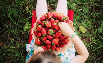 http://www.dreamstime.com/stock-image-hands-strawberry-child-happy-outdoors-image41861261