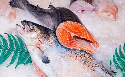 http://www.dreamstime.com/royalty-free-stock-photo-raw-salmon-ice-markeâ¤-image30163955