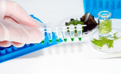 Lab testing produce