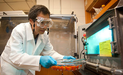 Dr. Haiqiang Chen with his UV light oven in the lab at the University of Delaware. (Photo by Wenbo Fan)