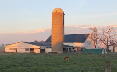 Miller-Farm-Silo