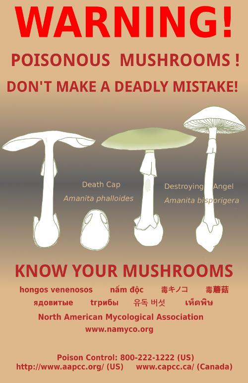NAMA_mushroom Warning_Poster