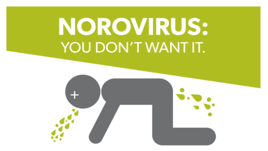 illustration graphic norovirus