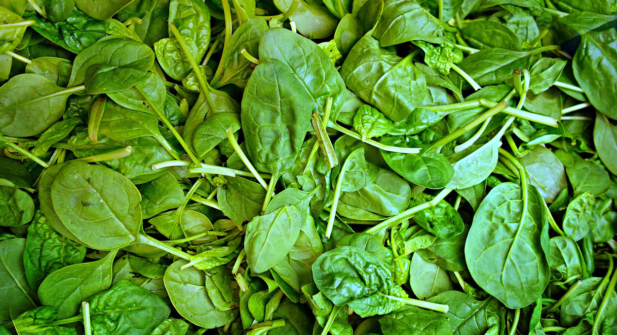 fresh spinach generic