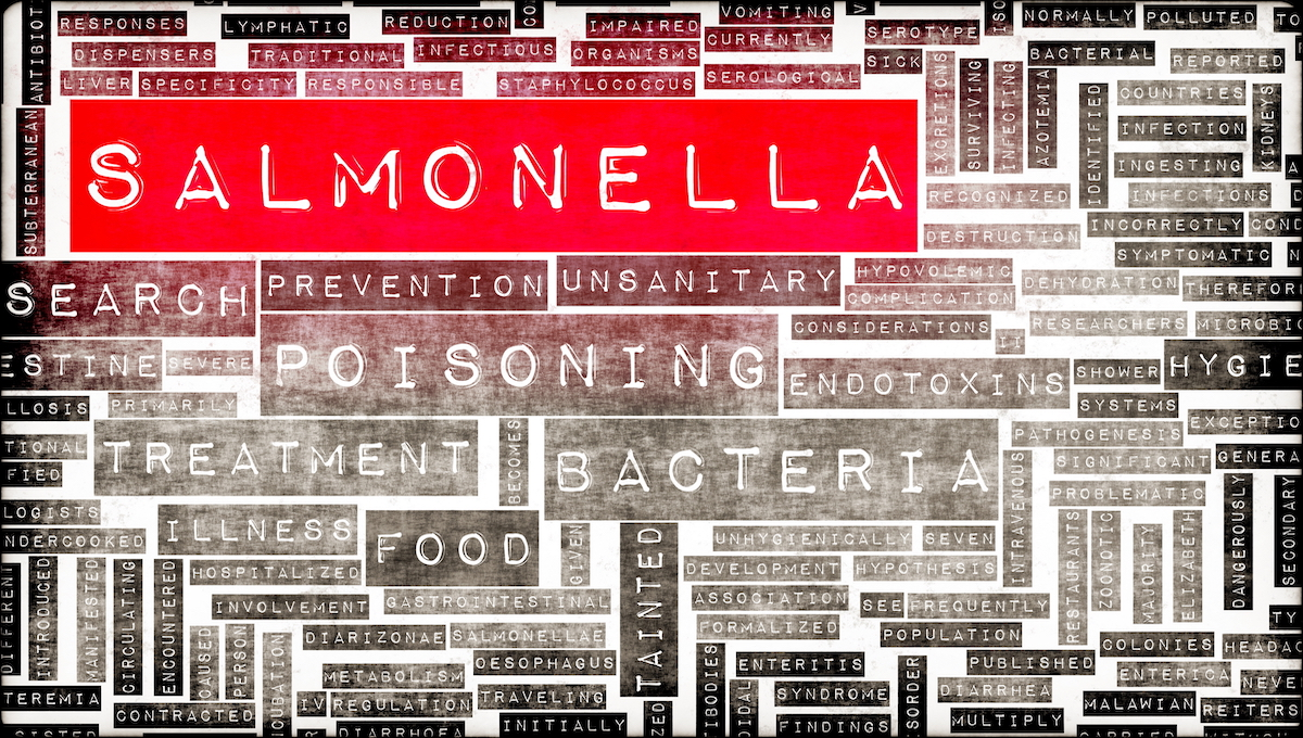 Salmonella outbreak in Norway sickens 20 people thumbnail