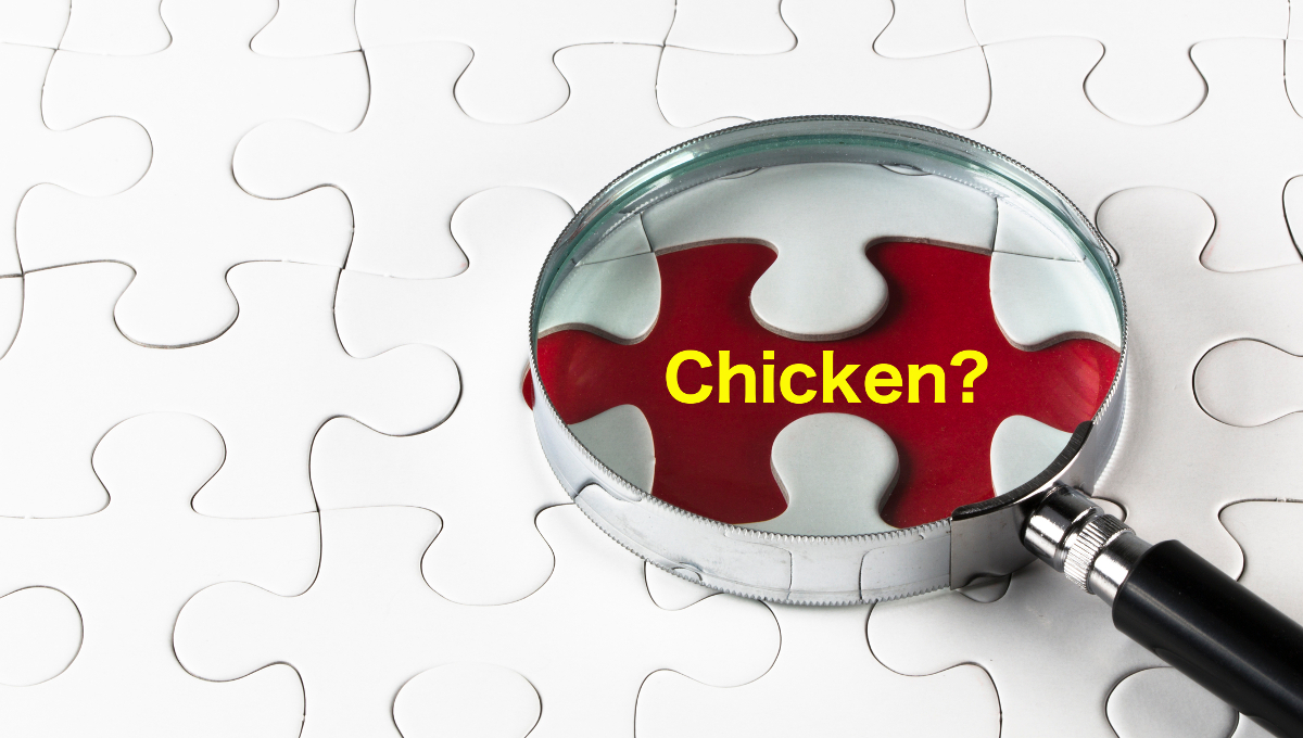 chicken magnifying glass question