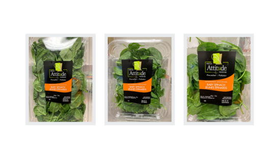 Fresh Attitude baby spinach recalled in Ontario, Quebec over possible salmonella risk