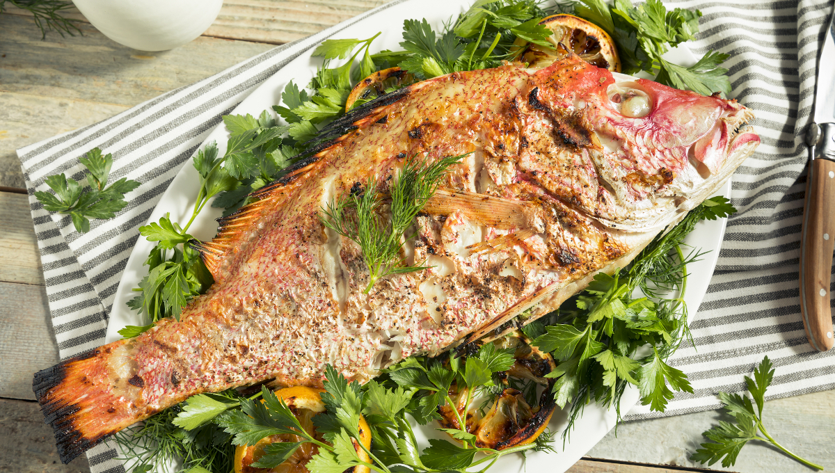 cooked red snapper